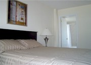 Spacious and Stylish Fully FURNISHED One-Bedroom Rental Condo