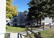 Newly Renovated Apartment with All Basic Amenities in Saskatoon